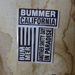 Image result for bummer california